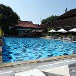 pool & pool bar