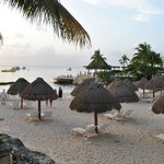Beach area with individual tiki huts for shade (no extra cost)
