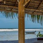 beach bamboo floor