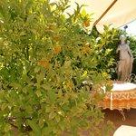 Le Hameau, breakfast garden