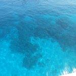 Stunning diving / snorkelling