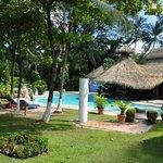 Der schöne Garten am Pool (mit guter Bedienung!)