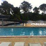 La piscine de taxo