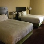 Very comfortable and plush bedding that make you fill like sleeping on a pillow top with additio