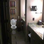 Room 423 Bathroom and Vanity