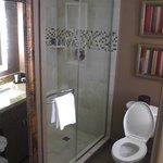 Room 423 Shower