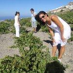 At the vineyard tasting grapes