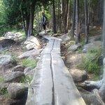 Path around Jordan Pond