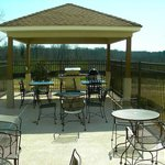 Gazebo Area with grilling