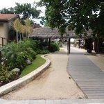 Walkway at Neptunes/Kimonos