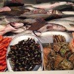 Fresh Seafood at 5 Oceanos