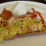 delicious lobster thermidore