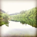 Staindale lake conservation area