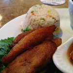 fried plantains and rice
