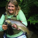 18 inch brown trout
