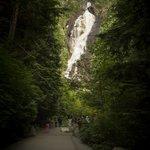 Shannon Falls Provincial Park 08