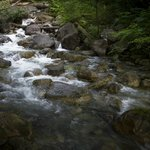 Shannon Falls Provincial Park 06