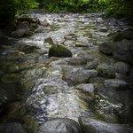 Shannon Falls Provincial Park 10
