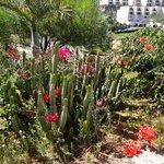 Bepflanzung am Parkplatz