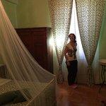 La camera dell'edera