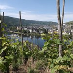 Bernkastel view from the wineyards