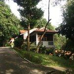 Our standalone villa