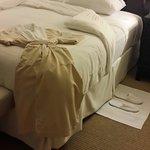 Excelente descanso en la habitacion. Pase mi noche de bodas, muy relax