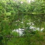 Petit lac près de l'hôtel