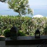 Blick vom Vorgarten des Zimmers aufs Meer
