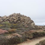China Rock view point at 17 Mile drive
