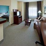 1 Bedroom 1 Bath Suite
