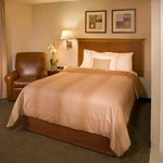 Single Bed Guest Room - Candlewood Suites Apex, NC
