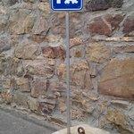 Estacionamento para cães