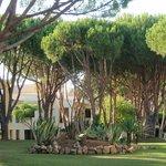 espace hôtel et jardin