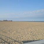 A fantastic dog friendly beach.