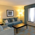 Relax & enjoy the comfortable living room area in our Studio Suite
