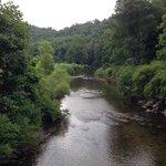 View of Winklers Creek from bridge