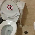 nasty toilet brush....