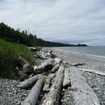 One of many rock beaches along the east coast of Graham Island