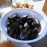SL Mussels