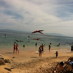 Tropical birds flying above the beach area