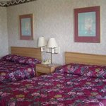 Photo of Inns of USA
