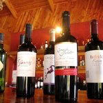 Chilean wines, all carefully selected