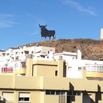 The bull! ��