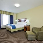 Holiday Inn Express and Suites Denver East Peoria King Room