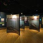 The museum main exhibit room