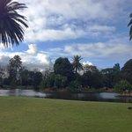Royal Botanic Gardens 9