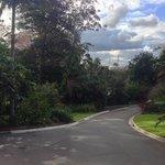 Royal Botanic Gardens 11