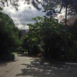 Royal Botanic Gardens 14