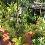 Lush gardens at the mulberry boutique hotel